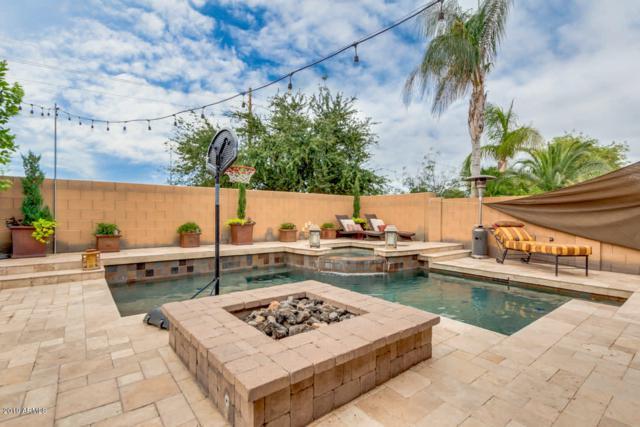 2198 E Wisteria Drive, Chandler, AZ 85286 (MLS #5952576) :: Revelation Real Estate