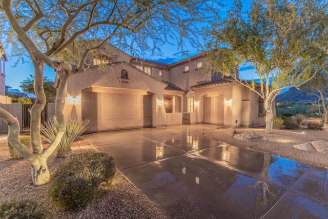 26944 N 88TH Drive, Peoria, AZ 85383 (MLS #5952601) :: Revelation Real Estate