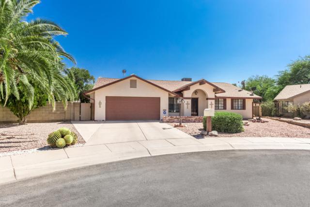 1261 E Crown Circle, Casa Grande, AZ 85122 (MLS #5952614) :: Yost Realty Group at RE/MAX Casa Grande