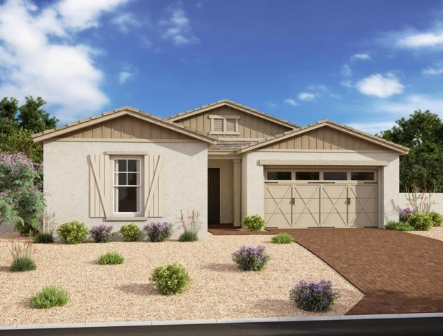 4209 S Quadrant, Mesa, AZ 85212 (MLS #5952623) :: The Everest Team at eXp Realty