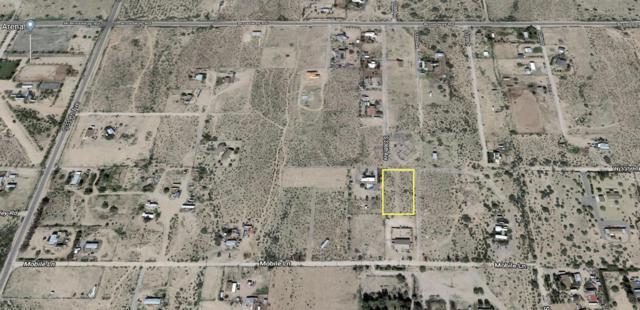 33551 W Weir Avenue, Tonopah, AZ 85354 (MLS #5952628) :: Yost Realty Group at RE/MAX Casa Grande