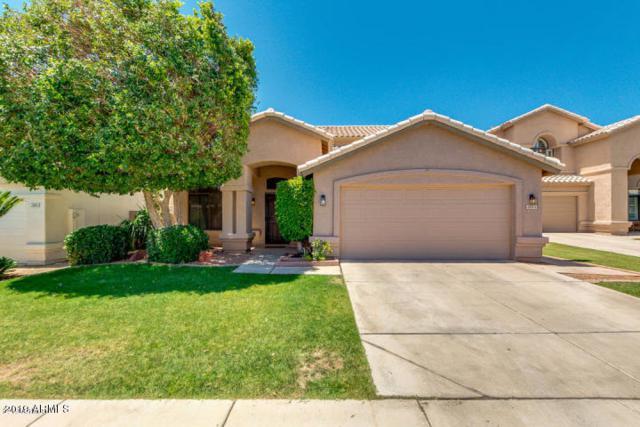 3844 S Ivy Court, Chandler, AZ 85248 (MLS #5952673) :: Howe Realty
