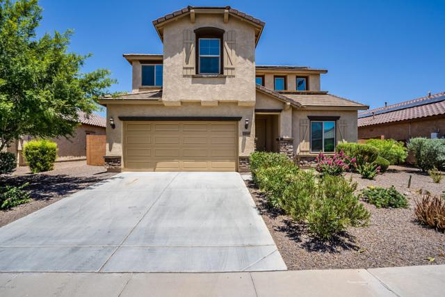 25948 W Potter Drive, Buckeye, AZ 85396 (MLS #5952684) :: neXGen Real Estate