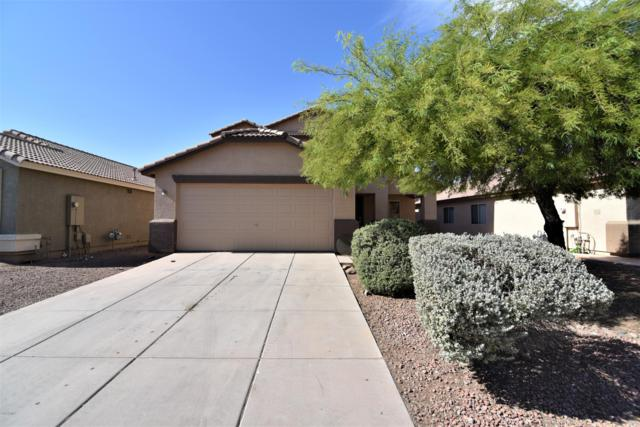 6010 W Encinas Lane, Phoenix, AZ 85043 (MLS #5952702) :: Yost Realty Group at RE/MAX Casa Grande