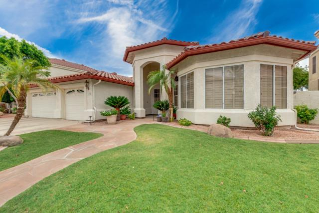 1538 W Laurel Avenue, Gilbert, AZ 85233 (MLS #5952709) :: Yost Realty Group at RE/MAX Casa Grande