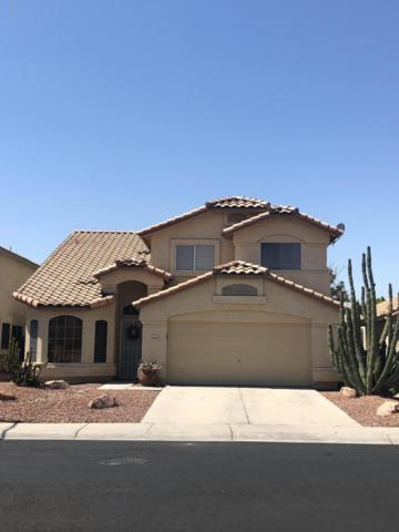 9003 W Fargo Drive, Peoria, AZ 85382 (MLS #5952723) :: Revelation Real Estate