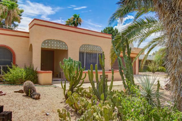 14419 N 5TH Street N, Phoenix, AZ 85022 (MLS #5952729) :: The Pete Dijkstra Team