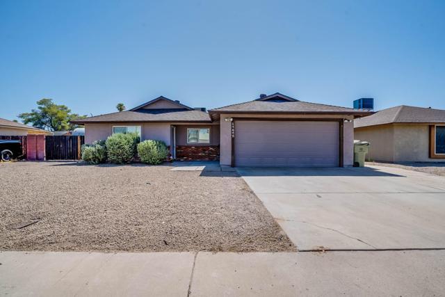14645 N 62ND Avenue, Glendale, AZ 85306 (MLS #5952731) :: Yost Realty Group at RE/MAX Casa Grande