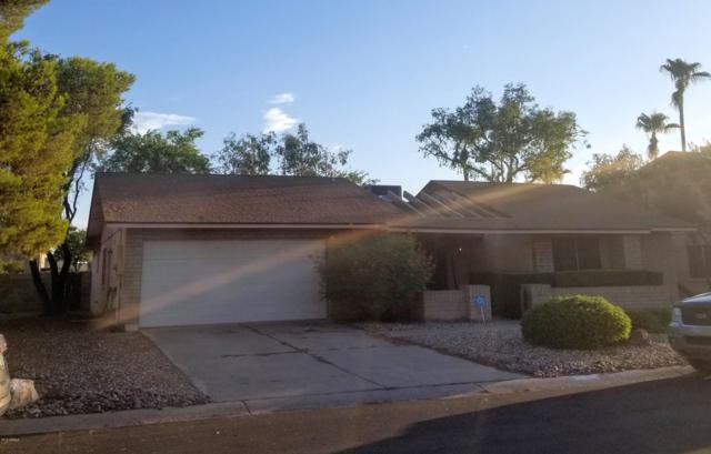 4706 W Lindner Drive, Glendale, AZ 85308 (MLS #5952732) :: The Pete Dijkstra Team