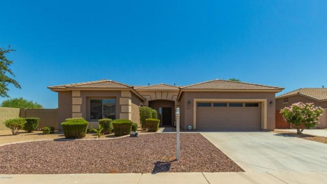 18305 W Georgia Avenue, Litchfield Park, AZ 85340 (MLS #5952756) :: The Property Partners at eXp Realty