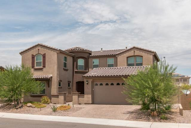 13764 W Sarano Terrace, Litchfield Park, AZ 85340 (MLS #5952838) :: Occasio Realty