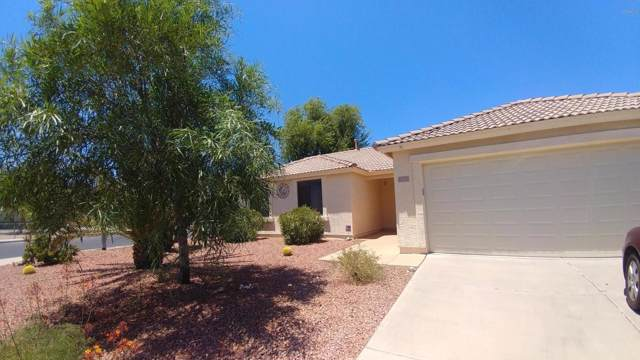 10798 W Robin Lane, Sun City, AZ 85373 (MLS #5952873) :: Riddle Realty