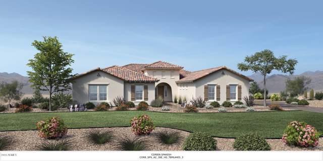 19919 E Country Meadows Drive, Queen Creek, AZ 85142 (MLS #5952928) :: Revelation Real Estate
