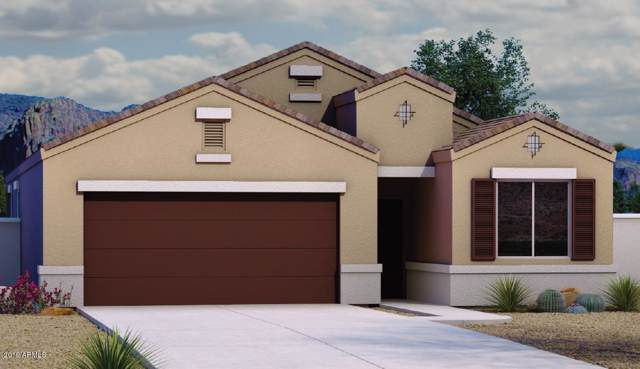 1129 E Viola Court, Casa Grande, AZ 85122 (MLS #5952952) :: Occasio Realty