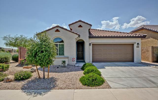 15806 N 109TH Avenue, Sun City, AZ 85351 (MLS #5952966) :: Riddle Realty