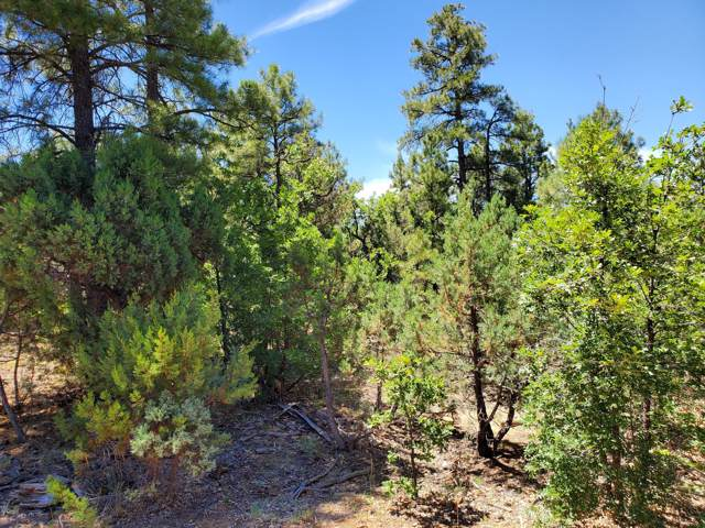 3891 W Hawthorn Road, Show Low, AZ 85901 (MLS #5953026) :: Riddle Realty