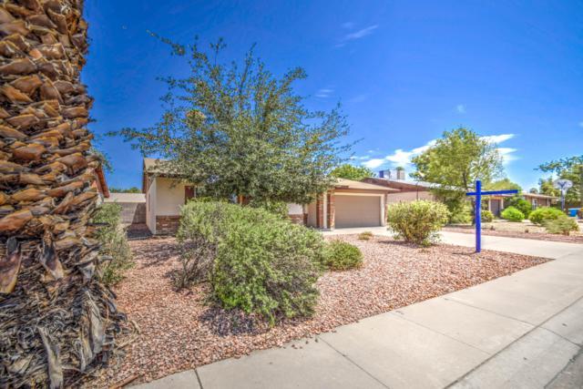 3552 W Malapai Drive, Phoenix, AZ 85051 (MLS #5953056) :: Brett Tanner Home Selling Team