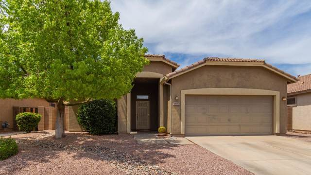 16050 W Maui Lane, Surprise, AZ 85379 (MLS #5953072) :: CC & Co. Real Estate Team
