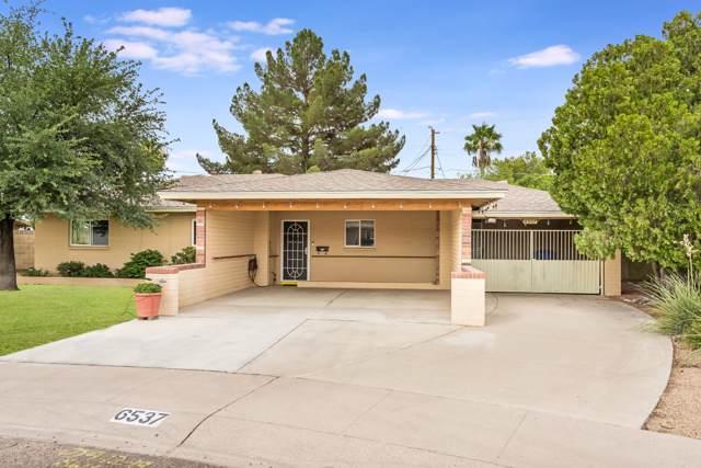 6537 N 16TH Drive, Phoenix, AZ 85015 (MLS #5953167) :: CC & Co. Real Estate Team
