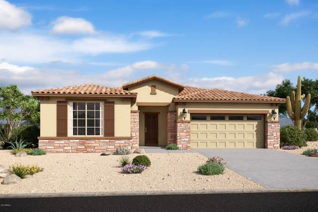 1335 E Aquarius Place, Chandler, AZ 85249 (MLS #5953178) :: Riddle Realty