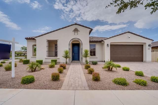 10121 E Thornbush Avenue, Mesa, AZ 85212 (MLS #5953249) :: Occasio Realty