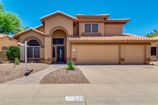 1609 W Gunstock Loop, Chandler, AZ 85286 (MLS #5953252) :: neXGen Real Estate