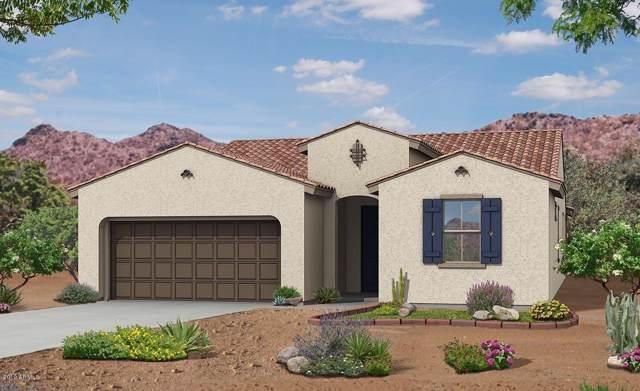12215 W Candelaria Court, Sun City, AZ 85373 (MLS #5953358) :: Homehelper Consultants
