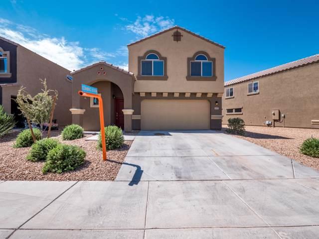 6035 E Sotol Drive, Florence, AZ 85132 (MLS #5953380) :: Occasio Realty