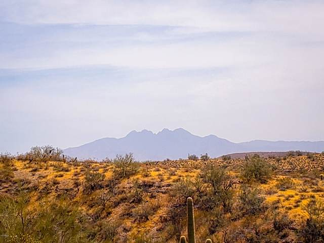 22452 N Boot Hill Parkway, Fort McDowell, AZ 85264 (MLS #5953383) :: Team Wilson Real Estate