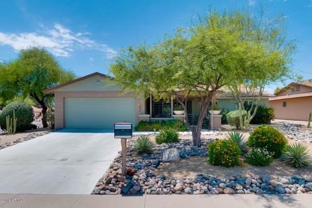 14202 N 62ND Street, Scottsdale, AZ 85254 (MLS #5953395) :: Occasio Realty