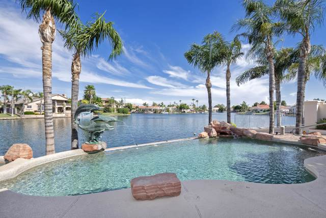 1750 E Coco Palm Court, Gilbert, AZ 85234 (MLS #5953415) :: CC & Co. Real Estate Team