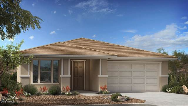 4490 W Pelotazo Way, San Tan Valley, AZ 85142 (MLS #5953462) :: Yost Realty Group at RE/MAX Casa Grande