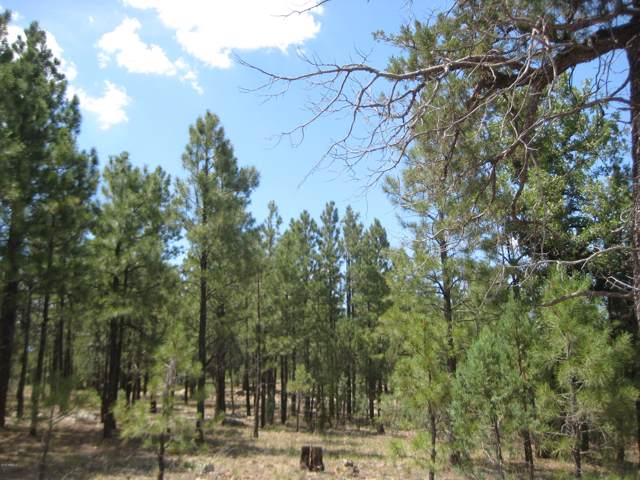 4606 Morning View Drive, Happy Jack, AZ 86024 (MLS #5953464) :: CC & Co. Real Estate Team