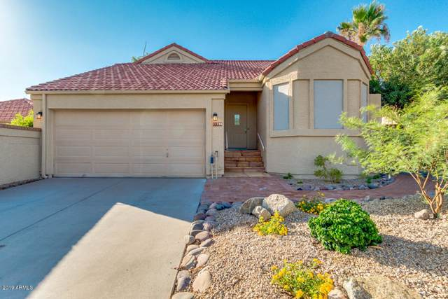 11230 E Mercer Lane, Scottsdale, AZ 85259 (MLS #5953488) :: Phoenix Property Group