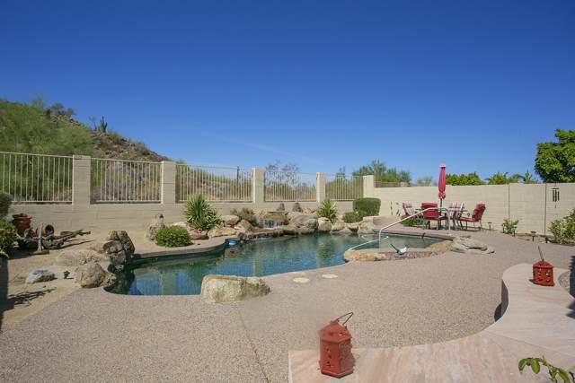 20424 N 17TH Place, Phoenix, AZ 85024 (MLS #5953527) :: The Kenny Klaus Team