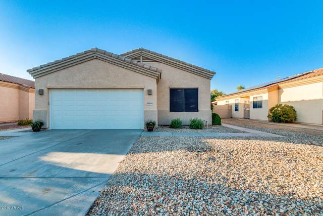 13534 W Young Street, Surprise, AZ 85374 (MLS #5953604) :: Nate Martinez Team