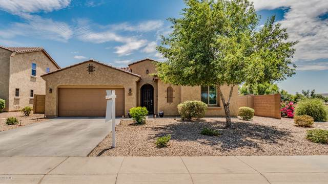 3311 E Yellowstone Place, Chandler, AZ 85249 (MLS #5953649) :: Occasio Realty