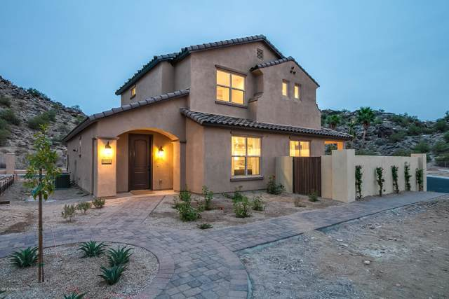9921 S 3RD Avenue, Phoenix, AZ 85041 (MLS #5953652) :: CC & Co. Real Estate Team