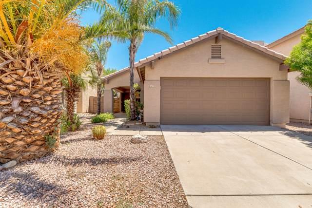 4031 E Anderson Drive, Phoenix, AZ 85032 (MLS #5953697) :: Nate Martinez Team