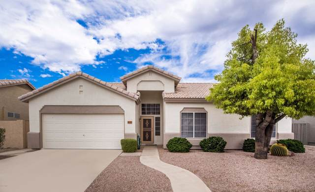 1632 E Constitution Drive, Chandler, AZ 85225 (MLS #5953732) :: Occasio Realty
