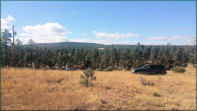 4098 Elk Path, Clay Springs, AZ 85923 (MLS #5953767) :: Devor Real Estate Associates