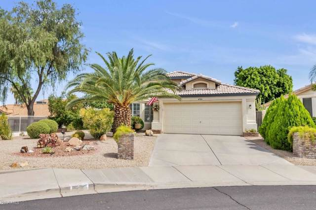 6704 E Norwood Street, Mesa, AZ 85215 (MLS #5953781) :: Brett Tanner Home Selling Team