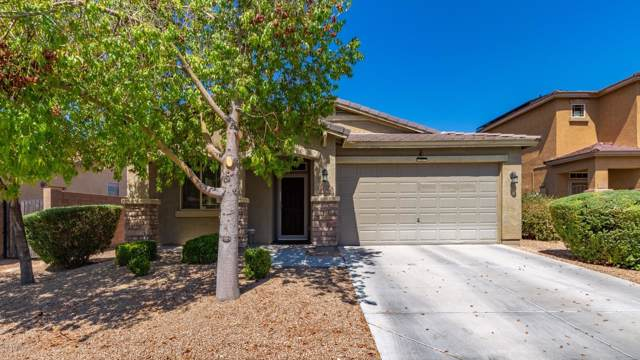 78 S 174th Drive, Goodyear, AZ 85338 (MLS #5953868) :: The Property Partners at eXp Realty