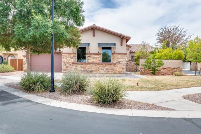 3221 E Mountain Village Circle, Phoenix, AZ 85042 (MLS #5953881) :: The Pete Dijkstra Team