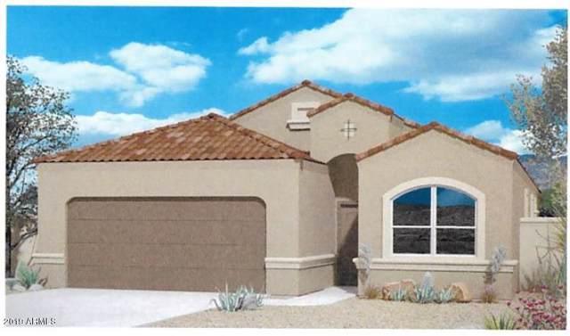 25607 W Allen Street, Buckeye, AZ 85326 (MLS #5953926) :: Brett Tanner Home Selling Team