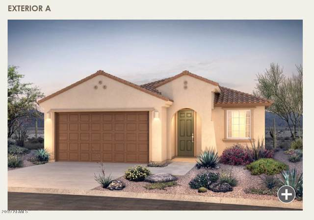 20140 W Harrison Street, Buckeye, AZ 85326 (MLS #5953990) :: Riddle Realty