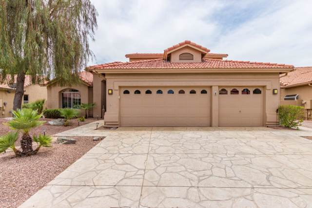 10213 E Hercules Drive, Sun Lakes, AZ 85248 (MLS #5954051) :: Team Wilson Real Estate