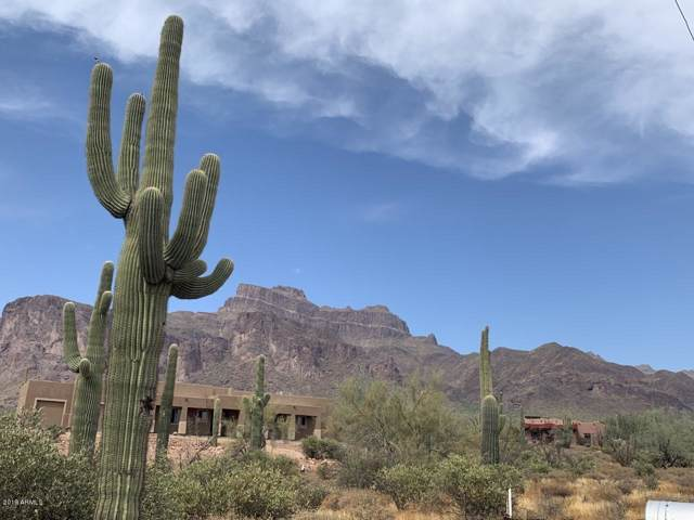 48 S La Barge Road, Apache Junction, AZ 85119 (MLS #5954057) :: Devor Real Estate Associates