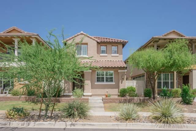 12461 W Hummingbird Terrace, Peoria, AZ 85383 (MLS #5954064) :: Homehelper Consultants