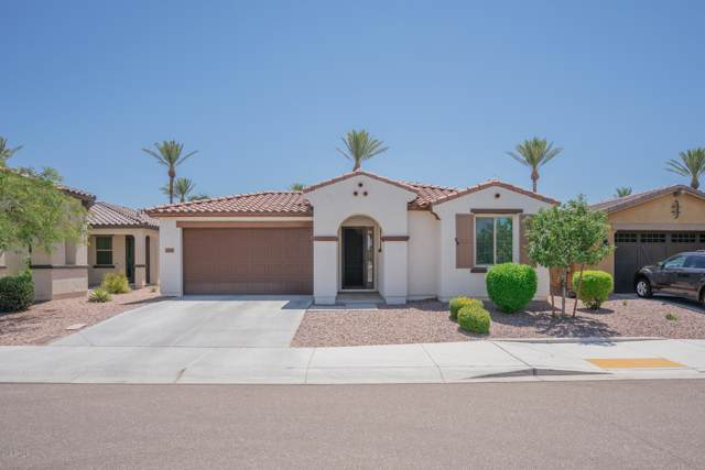 12847 N 93RD Drive, Peoria, AZ 85381 (MLS #5954072) :: Santizo Realty Group